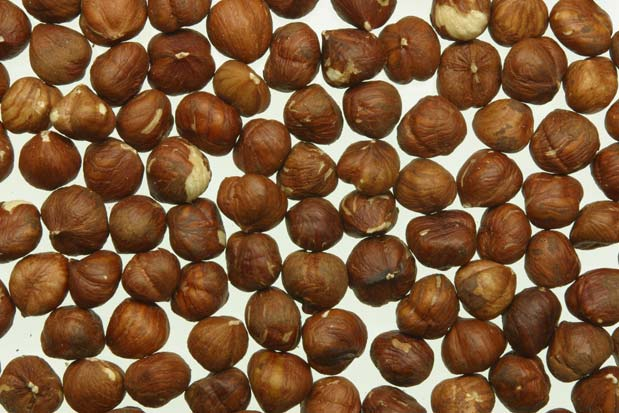 how to use macadamia nut oil for hair