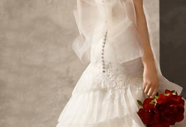 Vera Wang Introduces David's Bridal Line