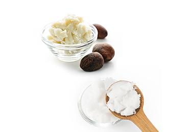 Coconut Oil & Shea Butter