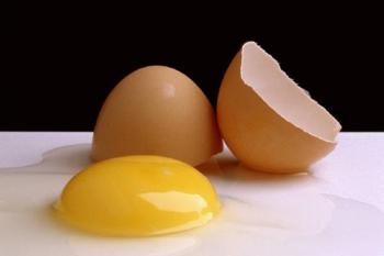 Egg & Mayo Conditioning