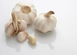 Garlic-Based Shedding Reducer