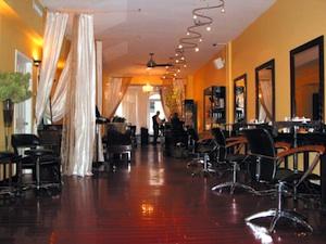 Christo Fifth Avenue Salon