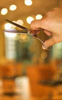 Stylist shears