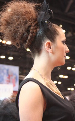 Thick braids beneath a Farouk models' textured pony-puff