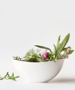 Wild herbs in a bowl