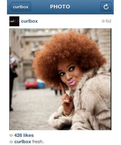 @curlbox