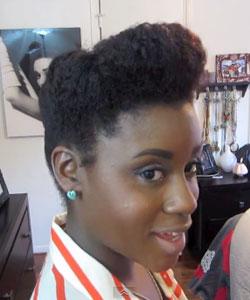 profile view of janelle monae style pompador