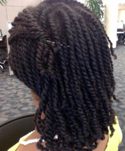 mini twists back view