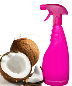 Coconuts and spray bottle for homemade coconut spray
