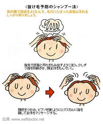 Japan S No Poo Movement
