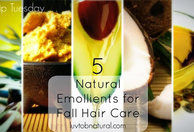 5 Ultimate Butters and Oils for Winter