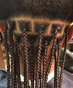 Formal Training in Natural Hair Styling is Not Required, but Still Important