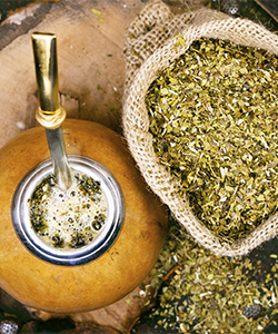 Why You Should Switch Your Morning Coffee for Yerba Mate